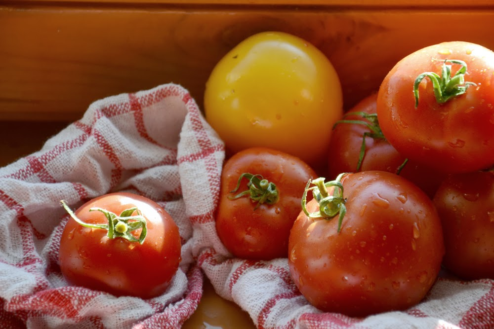 tomatid2