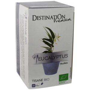 Destination eukalüptitee 20x1,5g