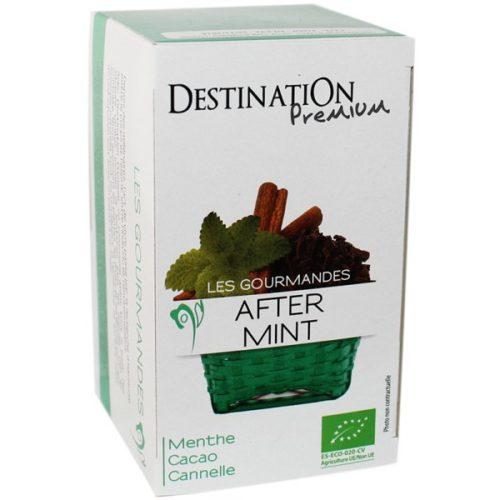 Destination Tea Infusion After Mint 20x1.5g