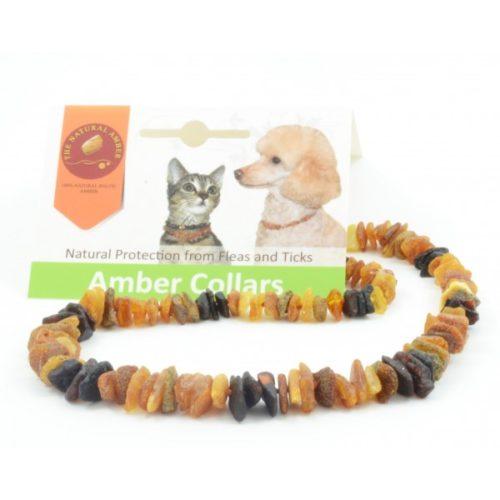 Amber Pet Necklace 25cm